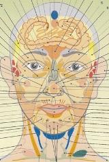 Угри на лице расскажут о проблемах со здоровьем
